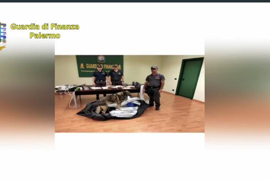 Arrestato all'aeroporto di Palermo con 7 dosi di marijuana