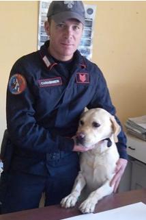 Studente col 'fumo' incastrato dal cane Ivan a Catania