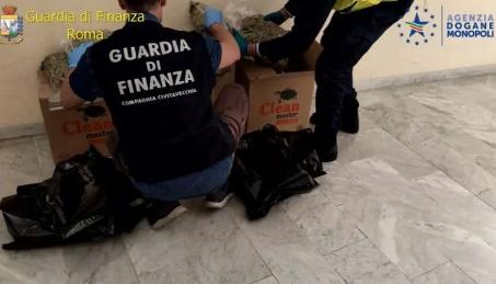 Preso con 143 chili di marijuana, arrestato a Civitavecchia