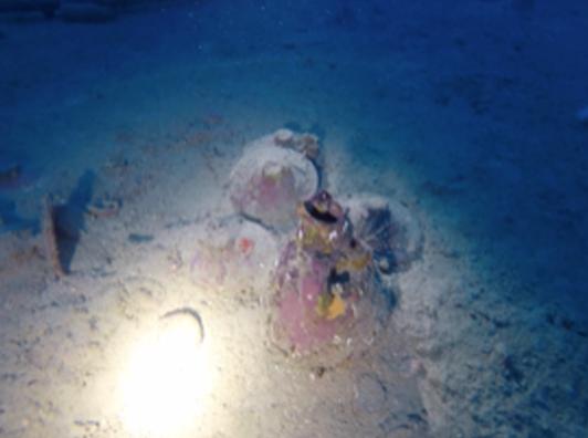 Soprintendenza del mare, scoperta nave oneraria a Ognina di Siracusa