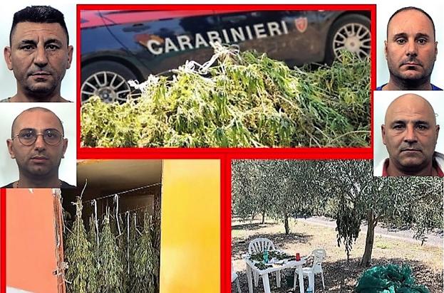 Sequestrati a Belpasso 70 chili di marijuana: arrestati 4 di Paternò
