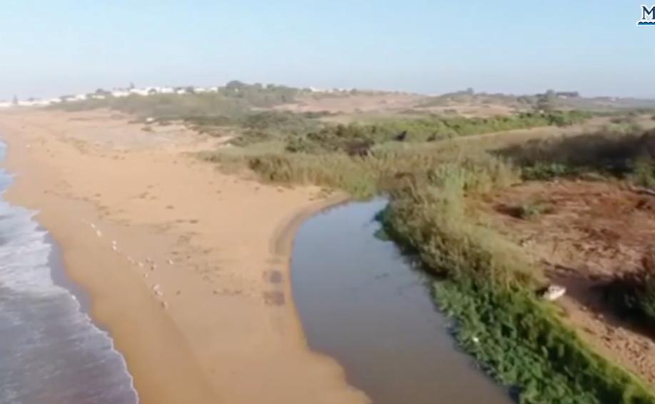 Mareamico: a Selinunte il fiume Modione inquina ancora