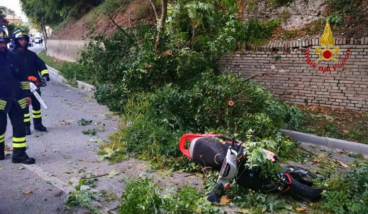 Con il motorino finisce contro un albero: sedicenne muore a Scicli