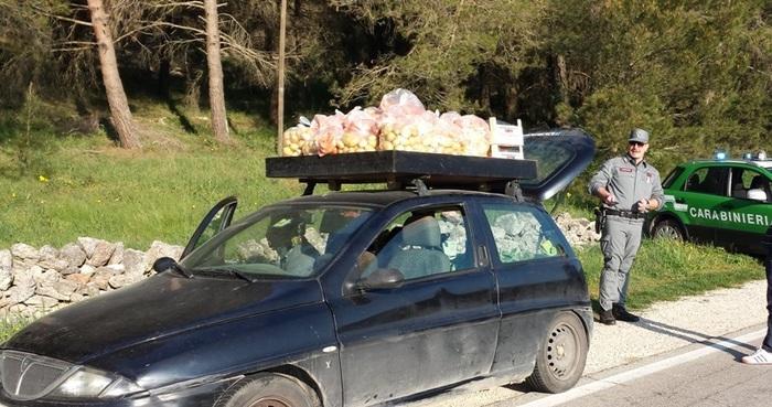 Frutta e verdura avariati a Bari, oltre 130 chili di prodotti sequestrati