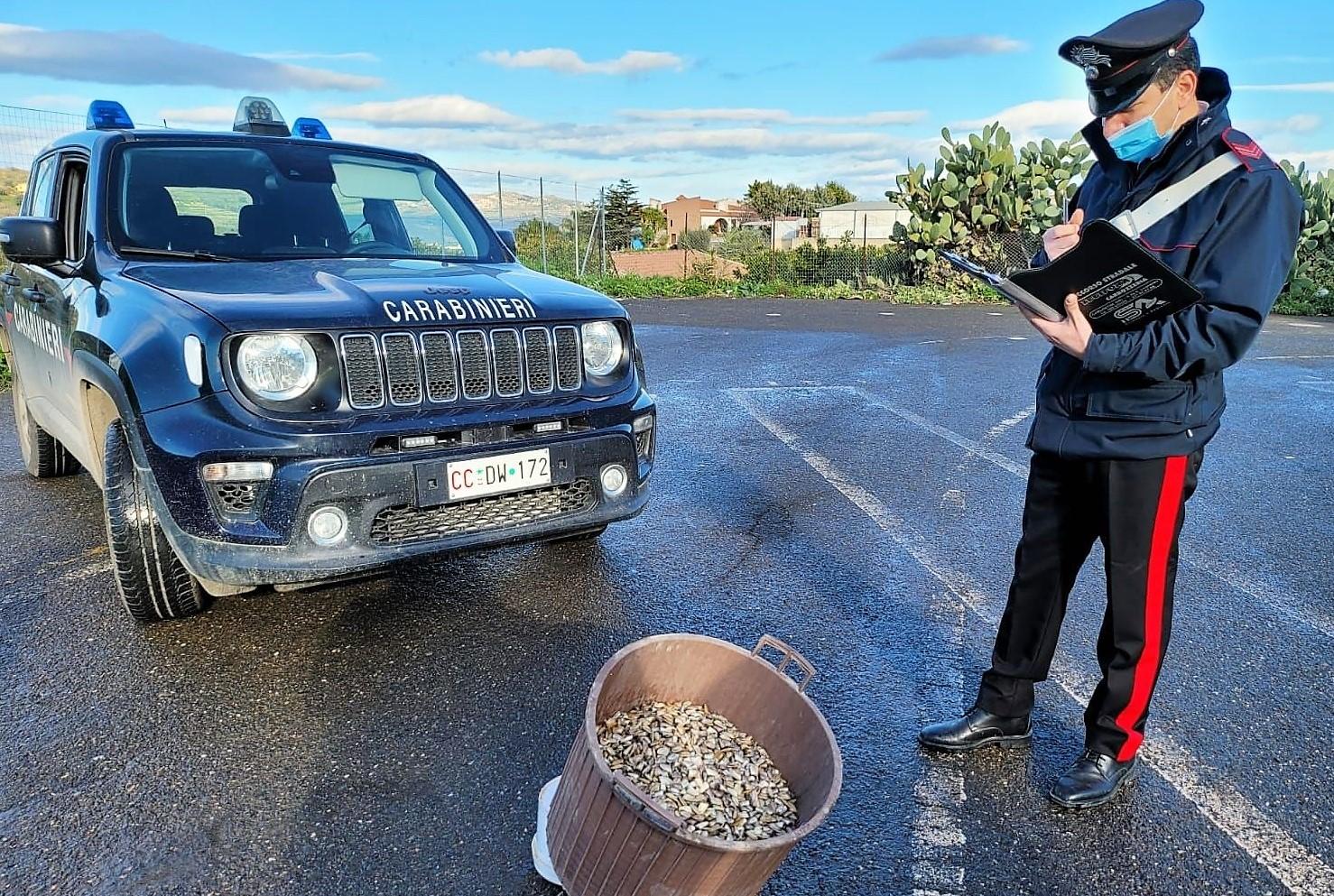 Palagonia, sequestrati 30 chili di prodotti ittici non tracciati