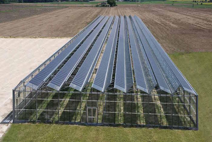 Sassari, fotovoltaico sulle serre per coprire la produzione illecita di energia