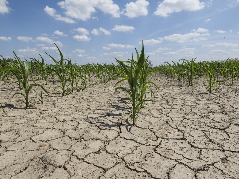 Regione, 'laghi collinari' per combattere la siccità in Sicilia