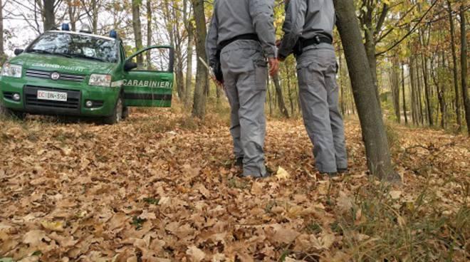 Sicilia: nuovo contratto integrativo per gli operai forestali