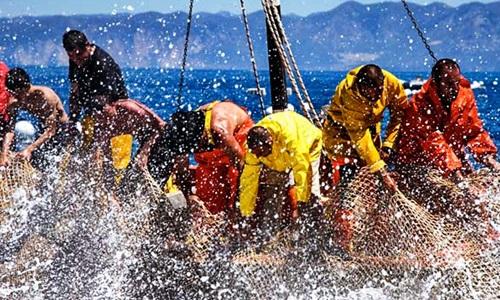 Sicilia: pesca, la Regione stanzia 16 milioni per 62 comuni