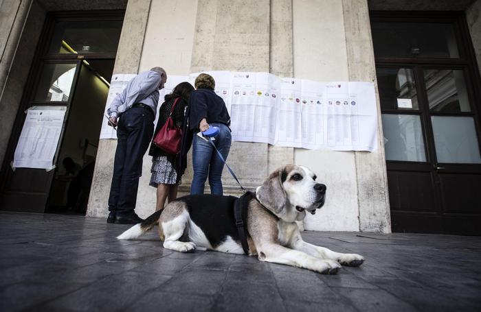 Elezioni comunali, alle 19 in Sicilia ha votato il 49 per cento