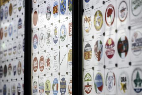 Elezioni: 75 simboli ammessi su 103 depositati