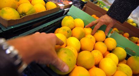 In Sicilia l'inclusione sul mercato del lavoro è social farming
