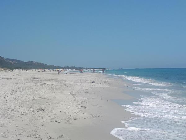 Flop a giugno nelle spiagge italiane, in Sicilia - 60% di presenze