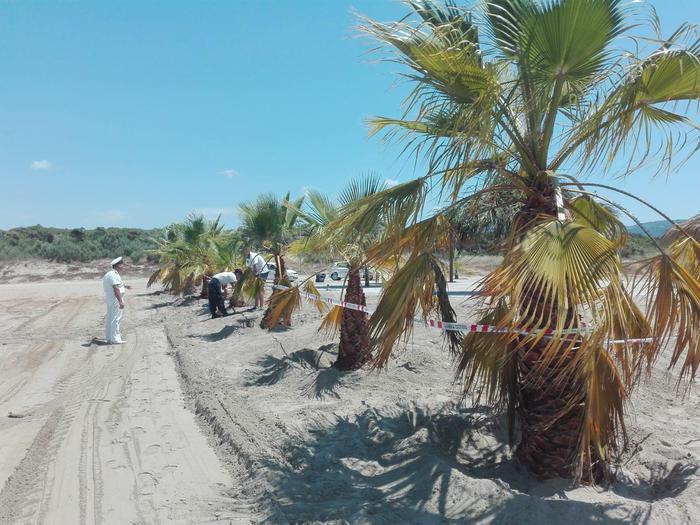 Spiaggia abusiva a Vibo Valentia Marina: la Capitaneria mette i sigilli