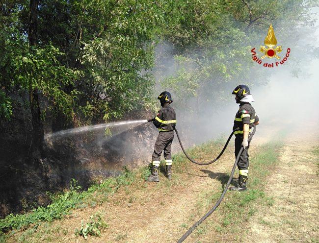 Incendio di sterpaglie a Catania minaccia alcune case
