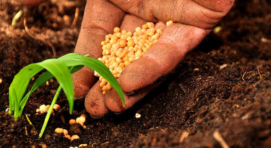 Sviluppo rurale in Sicilia, venerdì prossimo un incontro a Rosolini