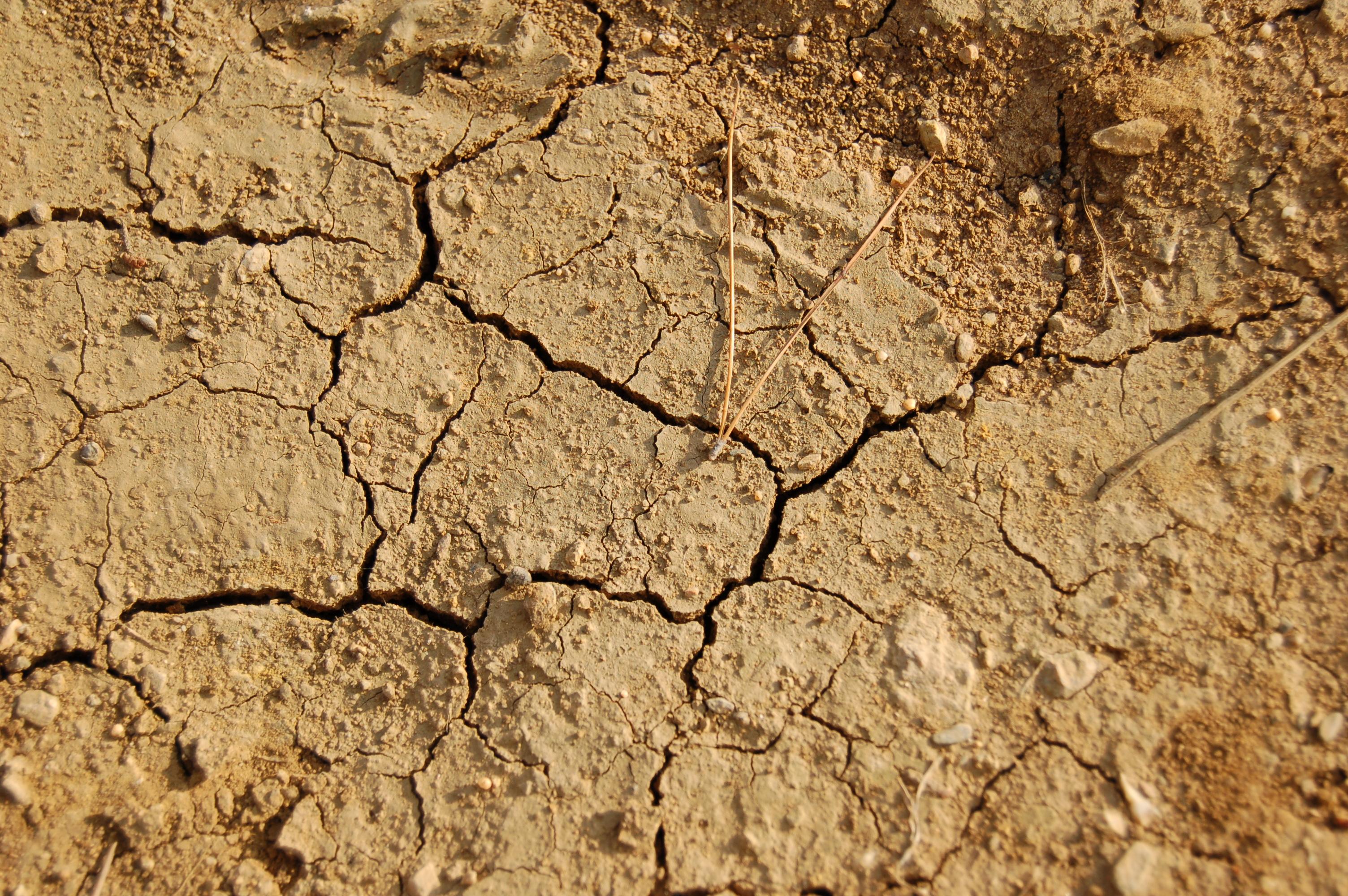 Siccità, invasi all'asciutto: situazione critica in Basilicata