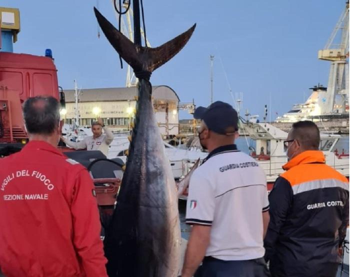 Pesca illegale dei tonni, un sequestro a Palermo