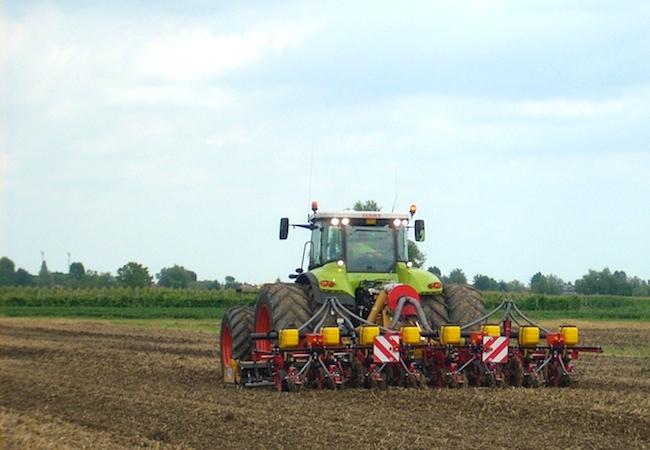 Truffa coi contributi in agricoltura, aperta un'inchiesta a Enna