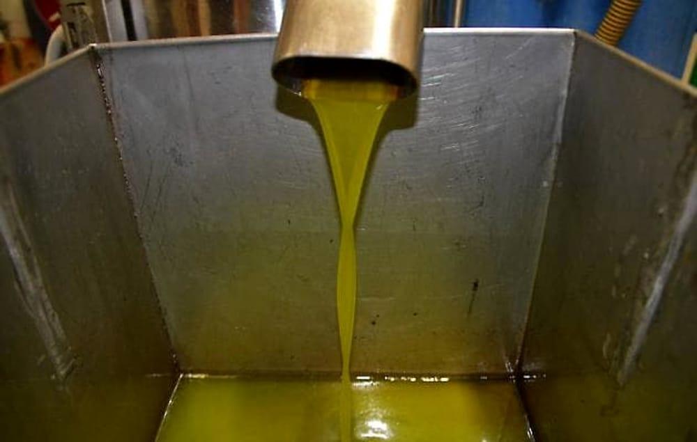 Trecento litri di olio rubati a Mazara: erano per le mense della Caritas