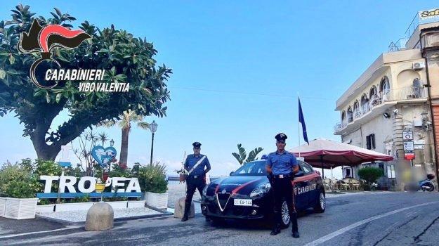 Prese a Tropea due bande specializzate nei furti: 16 arresti