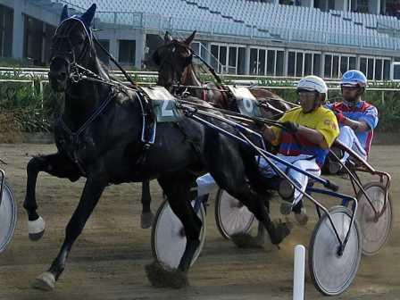 Trotto a Siracusa, Ultracagemar  il cavallo da battere nella seconda Tris