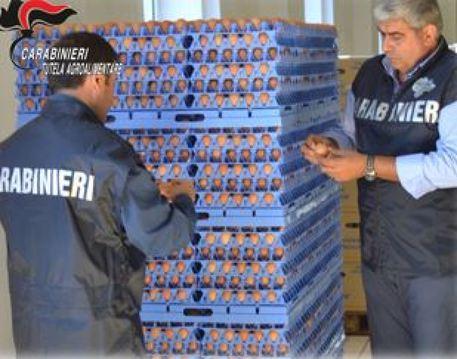 Modica, uova postdatate in un'azienda avicola: denuncia per tentata frode
