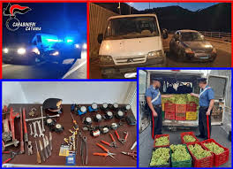 """Caltagirone, sgominata la """"banda dei vigneti"""": scattano sei arresti"""