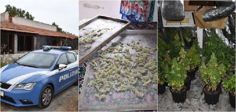 Catania, dopo il lockdown vanno nella casa al mare e trovano piante di 'erba'