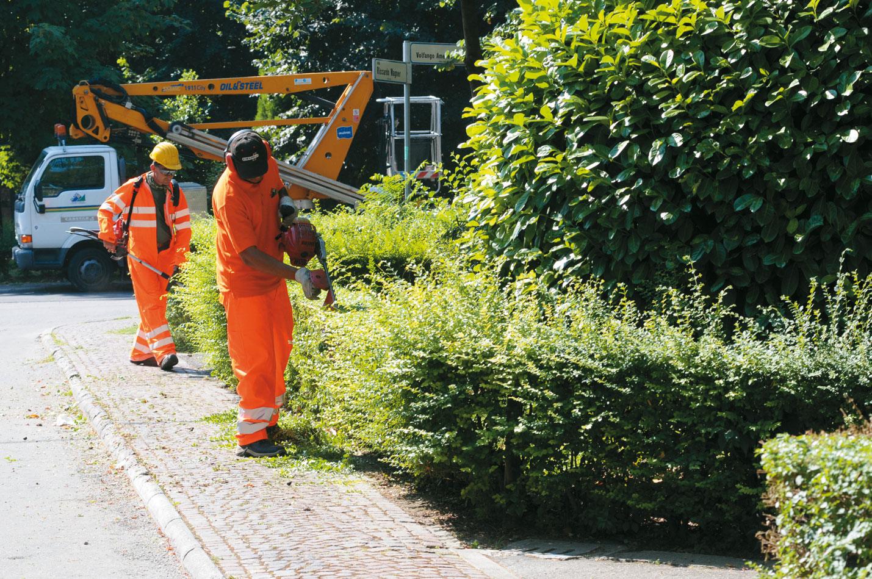 Siracusa, sanzionato Consorzio che cura il verde pubblico