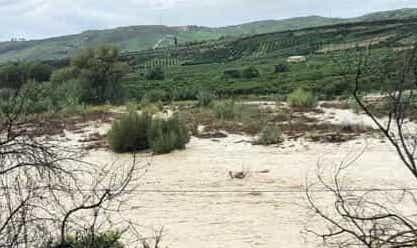 Esonda il fiume Verdura a Ribera: allagate campagne e  agrumeti