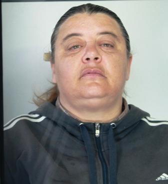 Minacce e furto aggravato a Enna, donna arrestata a Catania