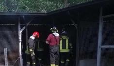 Incendio doloso in un canile di Vittoria: salvi gli animali