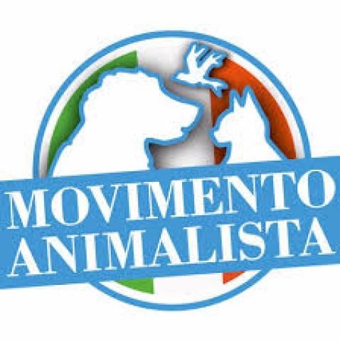 Ragusa, animalista denuncia pesca illegale e le uccidono il cane: indagini