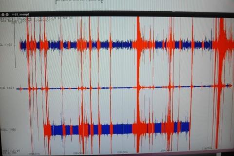 TERREMOTO OGGI AMATRICE - Scossa magnitudo 3.2 tra Lazio e Abruzzo